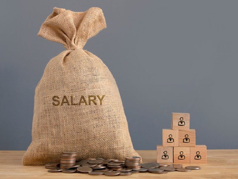 sack with salary and wooden blocks